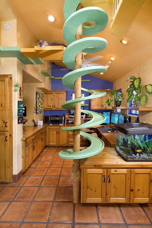 Casa di gatto di Peter Cohen